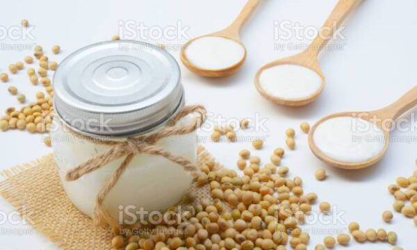 Yogurt di Soia Denso